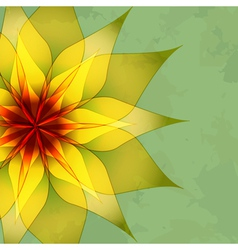 Vintage background with flower vector image vector image