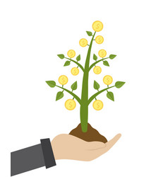 businessman hold money tree vector image
