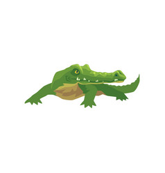 crocodile amphibian animal cartoon vector image
