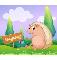 A hedgehog beside a wooden signage vector image vector image