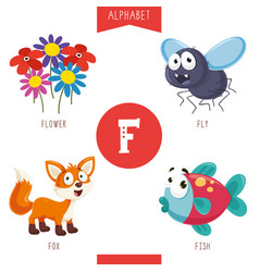 alphabet letter f and pictures vector image