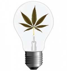 cannabis energy vector image