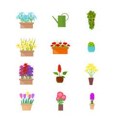 cartoon color flower stand elements set vector image
