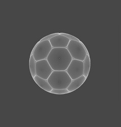 image of a soccer ball made of line shapes sport vector image