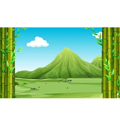 Nature scene with bamboo and hills vector image