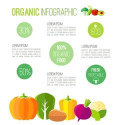 Organic infographic fresh vegetables vector