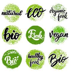 set hand drawn emblems eco food organic food vector image