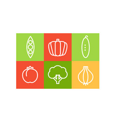 set of vegetables in linear style in vector image