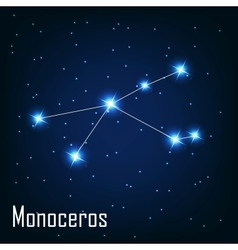 The constellation Monoceros star in the night sky vector