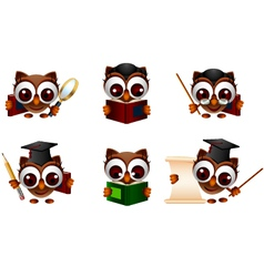 various of cute owl vector image