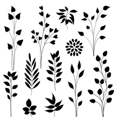 Leaf elements vector image