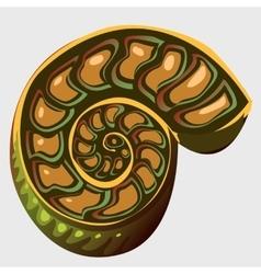 Ancient ammonite vector