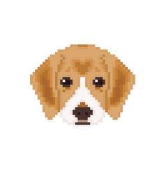 Beagle puppy head in pixel art style dog vector