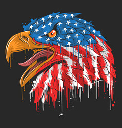 eagle independence usa flag america vector image