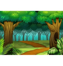 Forest scene with trail in woods vector
