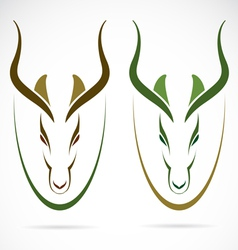 Image an head impala vector