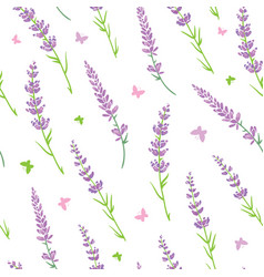 Lavender flowers purple green silhouettes vector