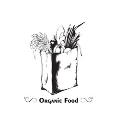 packet with organic healthy food in hand drawn vector image