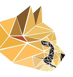 polygonal abstract geometric triangle cheetah low vector image