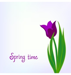 Spring card background with purple tulips vector