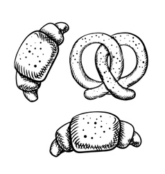 Tasty isolated croissants and pretzel vector