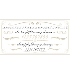 ALPHABET Old handwritten letters and numbers EPS10 vector