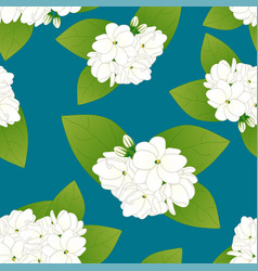 Arabian jasmine on indigo blue background vector