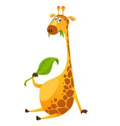 Cartoon cute giraffe chewing green leaf vector