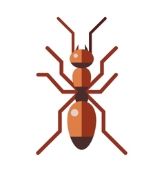 Red ant forest rufa small antenna insect nature vector