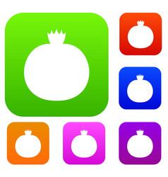 Ripe pomegranate set collection vector