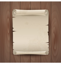 Background with manuscript vector image
