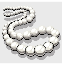 Beads from white pearls womens elegant jewelry vector image