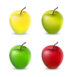 A set apples vector