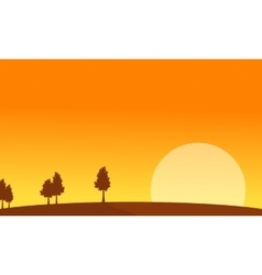 At sunrise scenery with tree backgrounds vector image