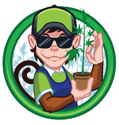 Cannabis monkey farmer mascot vector