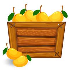 Mango on wooden banner vector