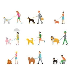 professional dog walking vector image