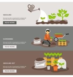Seedling Banner Set vector image