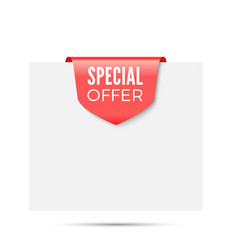 special offer ribbon flag vector image