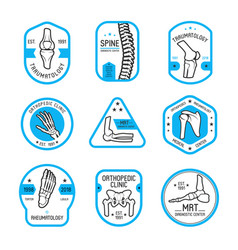 traumatology rheumatology and orthopedic label vector image