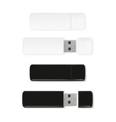 usb flash drive of plastic vector image
