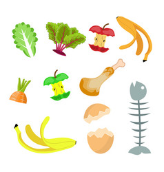 Organic waste food compost collection vector