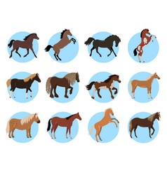 horses colourful banner in blue circles on white vector image
