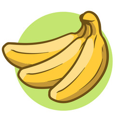 cartoon yellow branch of three bananas vector image