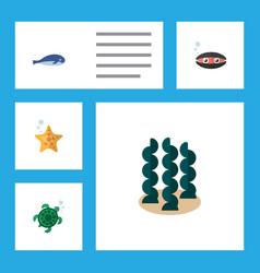 Flat icon sea set of scallop tortoise alga and vector