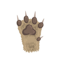 Paw of a cat animal on a white vector