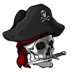 Skull of a pirate in a hat vector