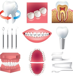 Stomatology set vector