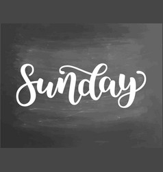 sunday handwriting font calligraphy vector image