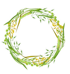 Wreath with herbs and cereal grass floral design vector